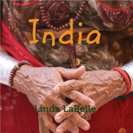 Book Cover - India, a journey of color & chaos & wonder!